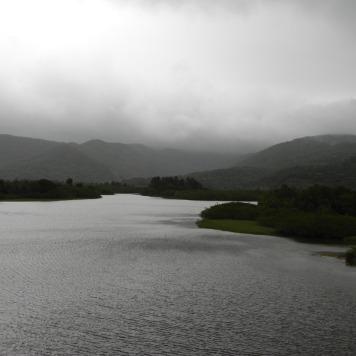 Margens do Rio Maciambu, ao sul de Palhoça, áre de preservação permanente