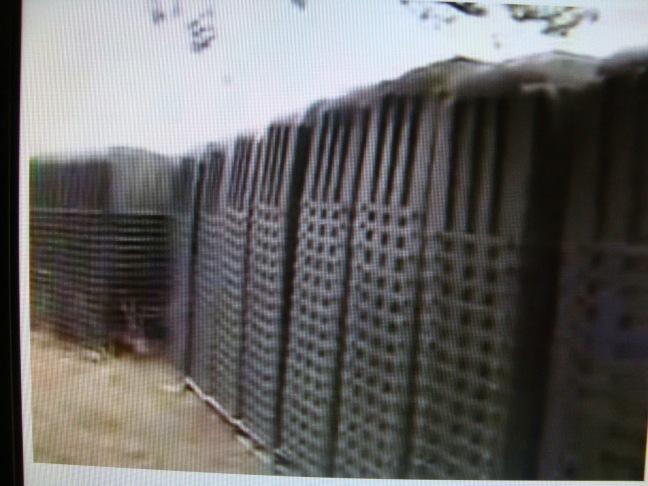 Caixões coletivos da FEMA