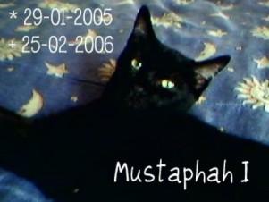 Mustaphah - 10.02.2006 a 25.02.2007