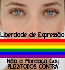 Liberdade de Expressão x Mordaça Gay