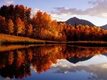 Bosque e lago, Irlanda