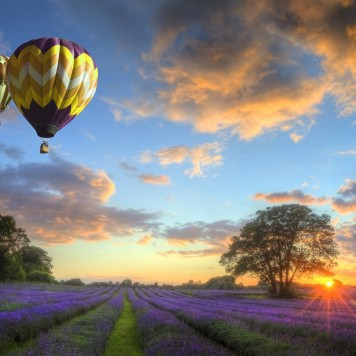 Balões - Pôr-do-Sol - Paisagem