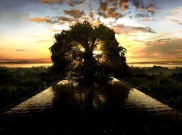 Cenário do filme The Fountain (A Fonte)