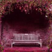 Jardins - Flores - Lâmpadas