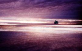 Mar, reflexo, solidão (local desconhecido)