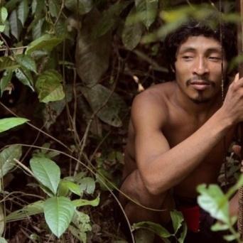 Índio da etnia Awá, do Maranhão, na floresta