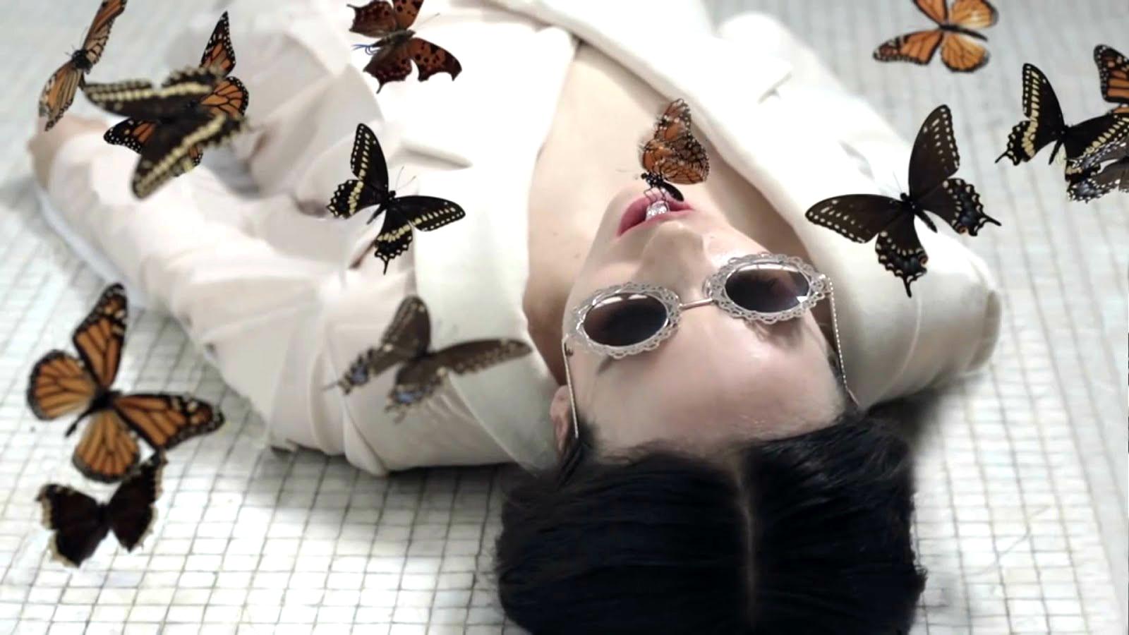 Monarch Butterflies Mind Control