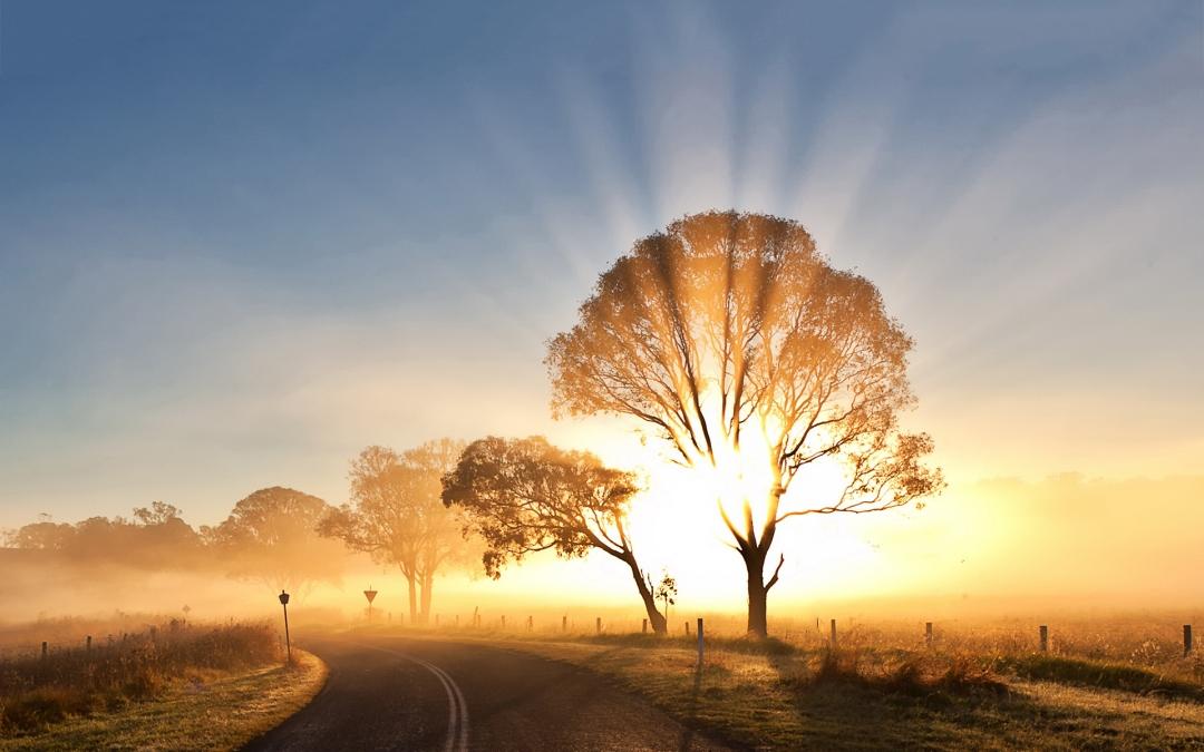 sunrise-morning-mist